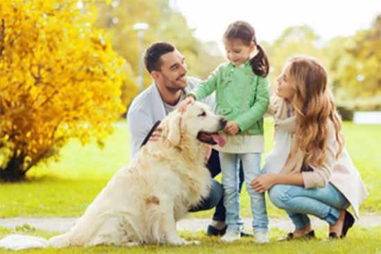 Счастливое семейство на природе
