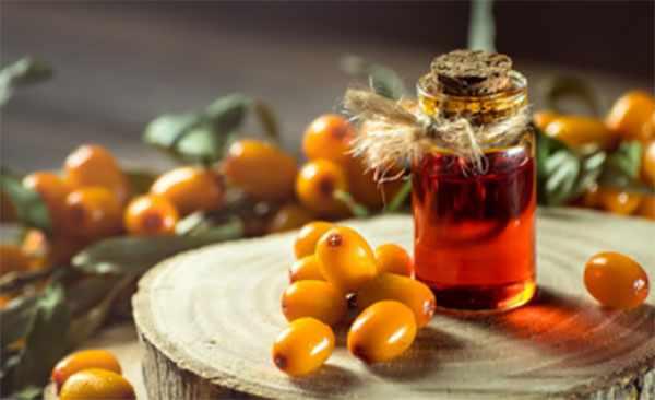 Облепиховое масло и ягоды облепихи