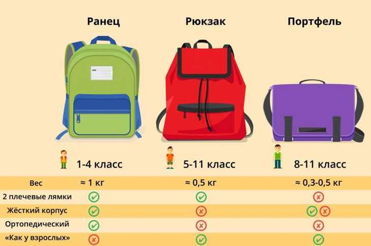 Различия портфеля, ранца и рюкзака схема