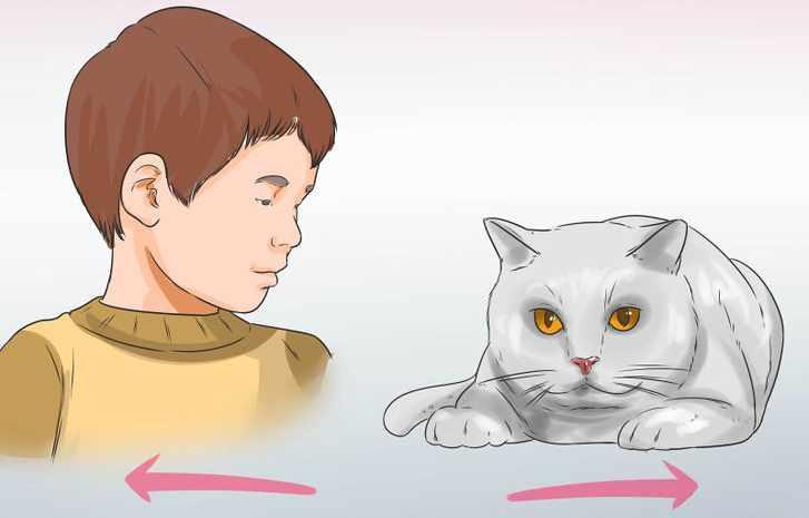 Рисунок ребенок и кошка