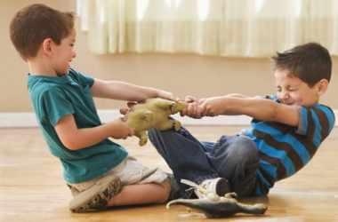 Как избежать конфликтов между детьми в семье