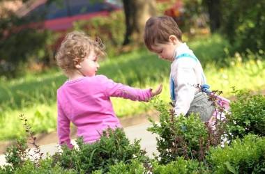 Властные, доминирующие дети и альфа-комплекс