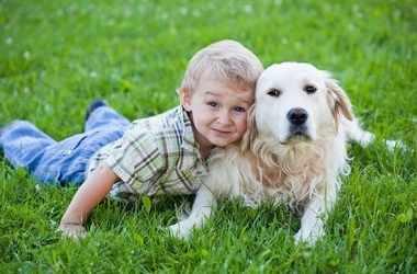 Положительное влияние домашних животных на детей