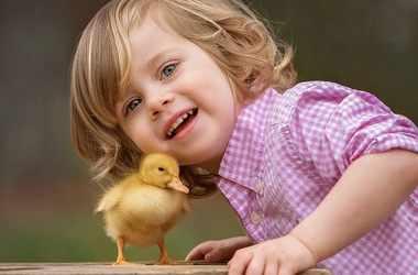Сострадание к животным – важная часть воспитания