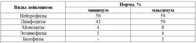 lejkocity-table2